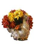 dekoraci dziękczynienia odosobniony indyk Obrazy Royalty Free