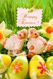 dekoraci Easter trawa Obrazy Stock