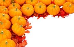 dekoraci spadek Halloween odosobniony dziękczynienie Zdjęcia Stock