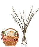 dekoracja Easter Obrazy Royalty Free