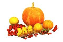 dekoracja jesienią fotografia stock