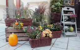 1 dekoracja jesienią Obrazy Stock