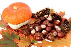 dekoracja jesienią Zdjęcie Stock