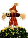 Dekoracja strach na wróble i mum kwiat Zdjęcia Stock