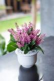 dekoracja sztuczny kwiat Zdjęcia Royalty Free