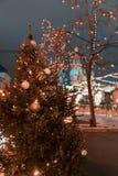 Dekoracje dla nowego roku i wakacji Bożenarodzeniowe piłki na gałąź blisko St basilu ` s katedra na placu czerwonym wewnątrz Obraz Stock