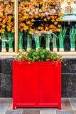 Dekoracje z kwiatami przy Japońską restauracją w Moskwa obraz royalty free
