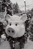Dekoracyjna świnia obraz stock