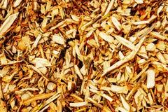 Dekoracyjna barkentyna, chocho?, mulching obraz stock