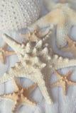 Dekoracyjna biała rozgwiazda na tle trykotowe tkaniny Se Obraz Royalty Free