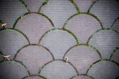 Dekoracyjna brukowanie płytka Tło, tekstura, wzór Zdjęcie Stock