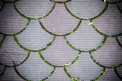 Dekoracyjna brukowanie płytka Tło, tekstura, wzór Obraz Royalty Free