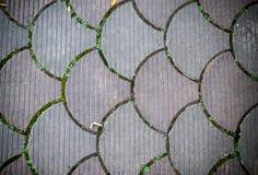 Dekoracyjna brukowanie płytka Tło, tekstura, wzór Zdjęcia Royalty Free