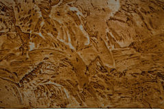 Dekoracyjna ściana. sztukateryjna tekstura Zdjęcie Royalty Free