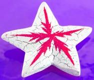 dekoracyjna gwiazda Fotografia Stock