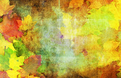 Dekoracyjna jesień Zdjęcia Royalty Free