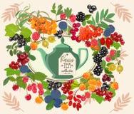 Dekoracyjna karta z herbat jagodami i setem również zwrócić corel ilustracji wektora Zdjęcie Stock