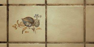 Dekoracyjna Kwiecista i roślina Artystyczna Ceramiczna płytka z wod kroplami w prysznic Fotografia Royalty Free