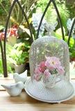 Dekoracyjna ptasia klatka z różami Obraz Royalty Free