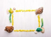 Dekoracyjna rama z seashells Zdjęcie Royalty Free