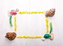Dekoracyjna rama z seashells Fotografia Royalty Free