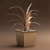 Dekoracyjna roślina robić karton Zdjęcie Stock