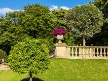Dekoracyjna waza dla kwiat petuni w sławnych Luksemburg ogródach Obraz Royalty Free