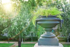 Dekoracyjna waza lub plantator Zdjęcia Royalty Free