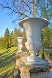 Dekoracyjna waza w Pavlovsk parku Fotografia Royalty Free