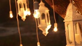 Dekoracyjne antykwarskie Edison stylu drucika żarówki wiesza w drewnach, szklany lampion, lampowy dekoracja ogród przy zbiory