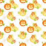 Dekoracyjne Halloweenowe banie, pająk sieć i kota bezszwowy vect, Fotografia Royalty Free