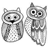 Dekoracyjnego ręki dravn sowy nakreślenia Doodle czerni Śliczny ptak na białym tle Dorosła kolorystyka wektor Obrazy Royalty Free