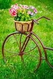Dekoracyjnego rocznika modela Stary bicykl Wyposażający Obrazy Stock