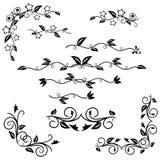 Dekoracyjni elementy ustawiający Zdjęcia Royalty Free
