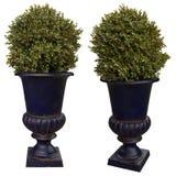 Dekoracyjni flowerpots fotografia stock