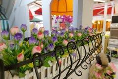 Dekoracyjni kwiaty na windowsill Obrazy Royalty Free