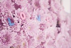 Dekoracyjni listy tworzy słowo miłość z różowymi kwiatami Fotografia Stock