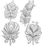 Dekoracyjni piórka Plemienni piórka z ornamentem ilustracja wektor