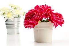 Dekoracyjni sztuczni kwiaty zdjęcie royalty free