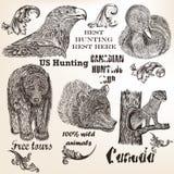 Dekoracyjni wektorowi elementy i zwierzęta dla tropić projekt Zdjęcie Royalty Free
