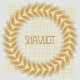 Dekoracyjni zbożowi ucho tworzyć projektów składy Żydowski wakacje Shavuot Symbole żniwo i royalty ilustracja