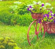 Dekoracyjny bicykl W ogródzie Zdjęcie Stock