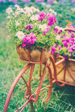 Dekoracyjny bicykl W ogródzie Fotografia Royalty Free