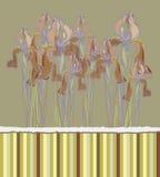 Dekoracyjny deseniowy zaproszenie z Irysowymi kwiatami, Fotografia Royalty Free