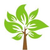 dekoracyjny drzewo Obraz Royalty Free