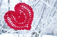 Dekoracyjny dziewiarski serce na jedliny gałąź Zima wakacji pojęcie Miłości pojęcia tło Luty 14 Tekstylny czerwony serce dalej Zdjęcie Royalty Free