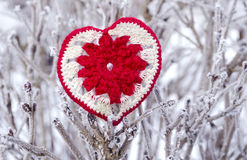 Dekoracyjny dziewiarski serce na jedliny gałąź Zima wakacji pojęcie Miłości pojęcia tło Luty 14 Tekstylny czerwony serce dalej Obraz Royalty Free