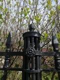 dekoracyjny element ogrodzenie obrazy royalty free