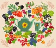 Dekoracyjny kolorowy tło z jagodami dla herbaty również zwrócić corel ilustracji wektora ilustracji