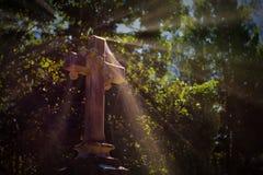 Dekoracyjny krzyż z Spiderweb i Sunrays fotografia royalty free
